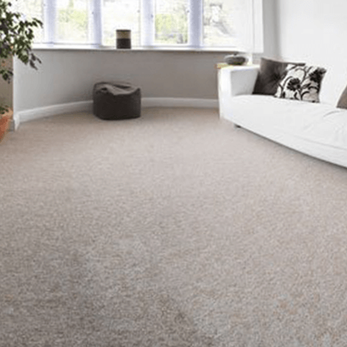 carpet showrooms
